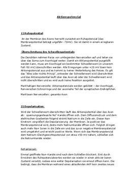 Klausurvorbereitung - Aktionspotenzial