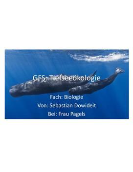 Referat über die Tiefseeökologie