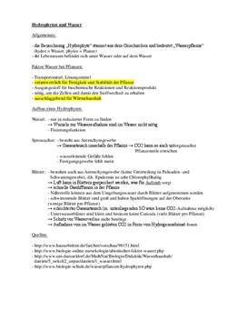 Referat: Hydrophyten und Wasser