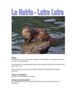 La Nutria - Spanisch Hausaufgabe