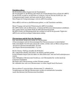 Proteinbiosynthese - Aufbau von einer Biosynthese