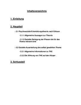 Facharbeit - Identiätskonzept nach Erikson